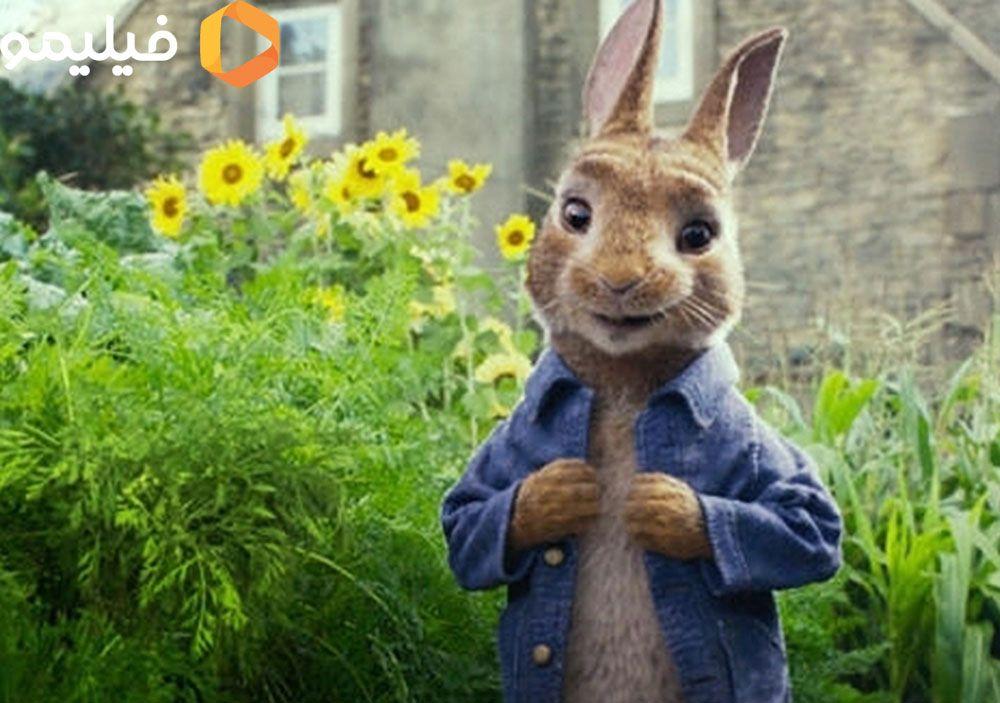 خرگوشهای ناز برمی گردند